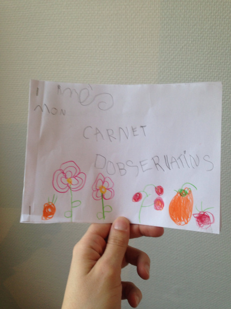 activit s pour les enfants faire germer des graines les mercredis jolis blog. Black Bedroom Furniture Sets. Home Design Ideas