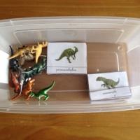 Montessori: apprendre avec les cartes de nomenclature (dinosaures)