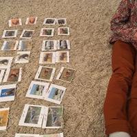 Géographie: les cartes de nomenclature des animaux de la savane