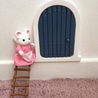 La porte de la Petite Souris (Wonder Nology)