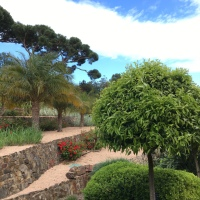 Voyager avec des enfants: Espagne #6 (Jardin botanique de Cap Roig)