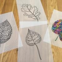 Kids Activity: feuilles d'automne et papier calque
