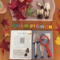 Kids Activity: à la découverte des champignons