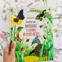 Fenêtres sur Papillons et autres petites bêtes ( éditions Usborne )